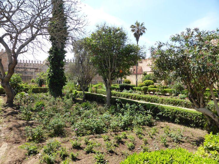 Kasbah of the Udayas, Andalusian gardens, Rabat