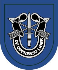 19th Special Forces Group Decal