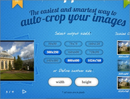 Crop images online with predetermined sizes for common online image purposes