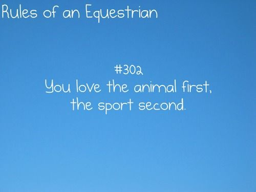 rules of an equestrian. No matter what the ribbon I will love KC until one of us shall pass.