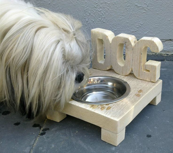 water bowl for the dog, made from leftover wood scaffolding (cut out with a jigsaw)