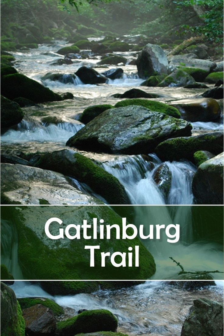 Gatlinburg Trail is one of only two trails in Great Smoky Mountains National Park that allows dogs. The trail is popular because it begins (or ends) in Gatlinburg. For more information about Gatlinburg Trail, follow the pin to the website.