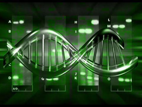Algoritmo Genetico - Inteligencia Artifical - CaioUechi USP