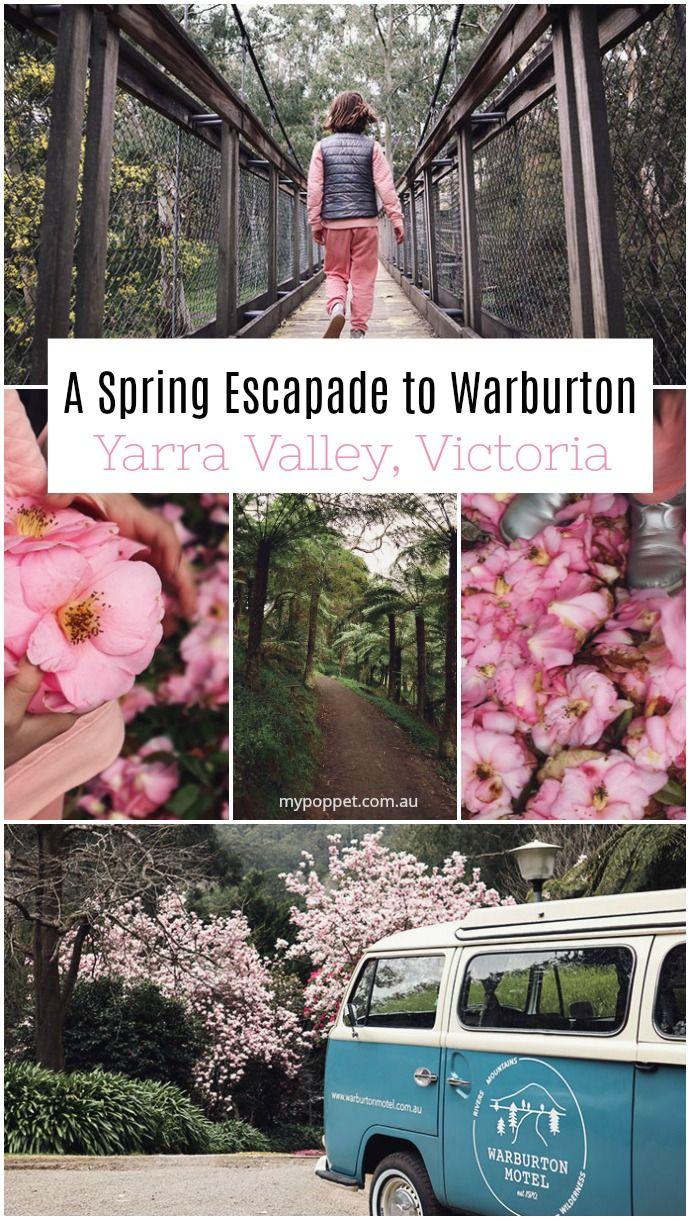 A Spring Escapade to Warburton, Yarra Valley, Victoria Australia #familytravel #travel #australia