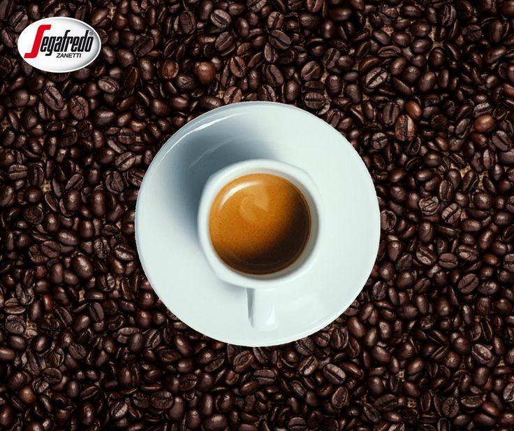 Potrzebujecie mocniejszego zastrzyku kofeiny? Wybierzcie, więc mieszankę z przewagą ziaren robusty, dzięki czemu zawartość kofeiny w kawie będzie wyższa! #segafredo #coffepower #coffeelovers #instacoffee #powerofcoffee #coffeetime #coffeebean #robusta #arabika