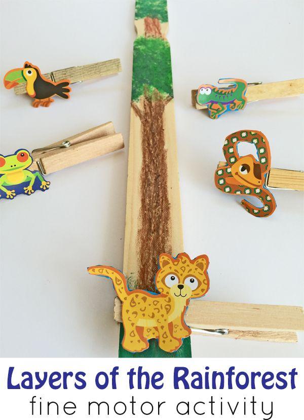 Rainforest Theme Activities And Printables For Preschool Pre K And Kindergarten Kidsparkz Rainforest Animals Rainforest Theme Rainforest Preschool