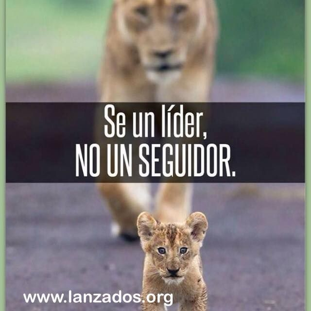Un lider es emprendedor. Emprende con nosotros en www.lanzados.org