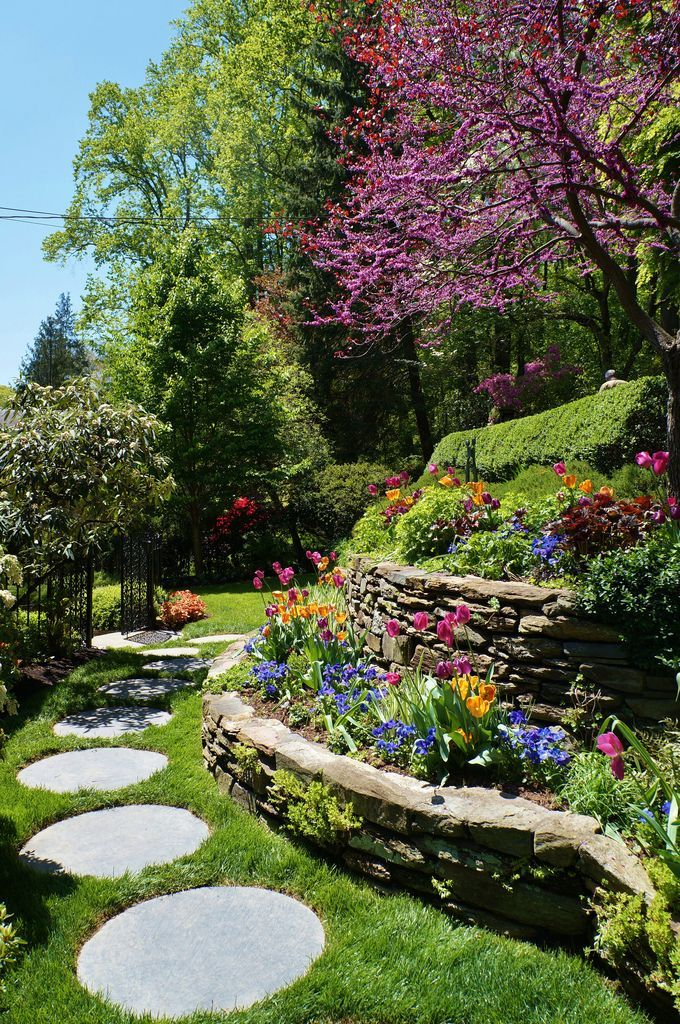 Stone Terrace With Cercis And Circular Stepping Stones Sloped Garden Yard Landscaping