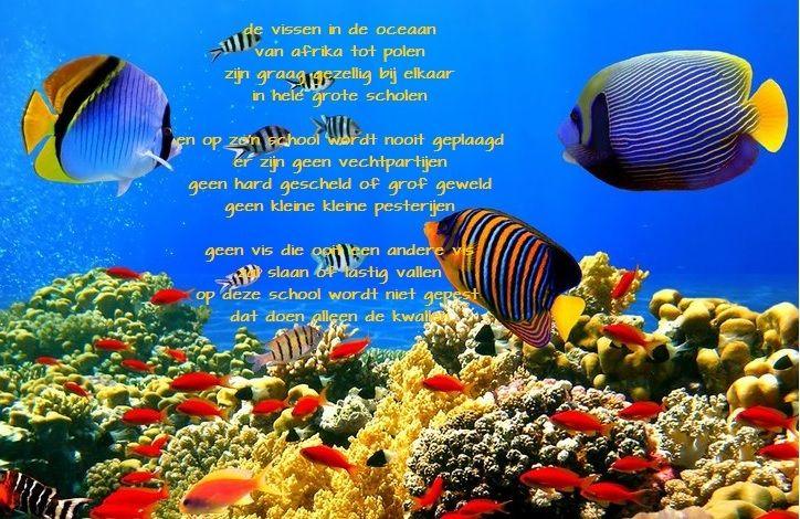 Afbeeldingsresultaat voor mooie gedichtjes vissen