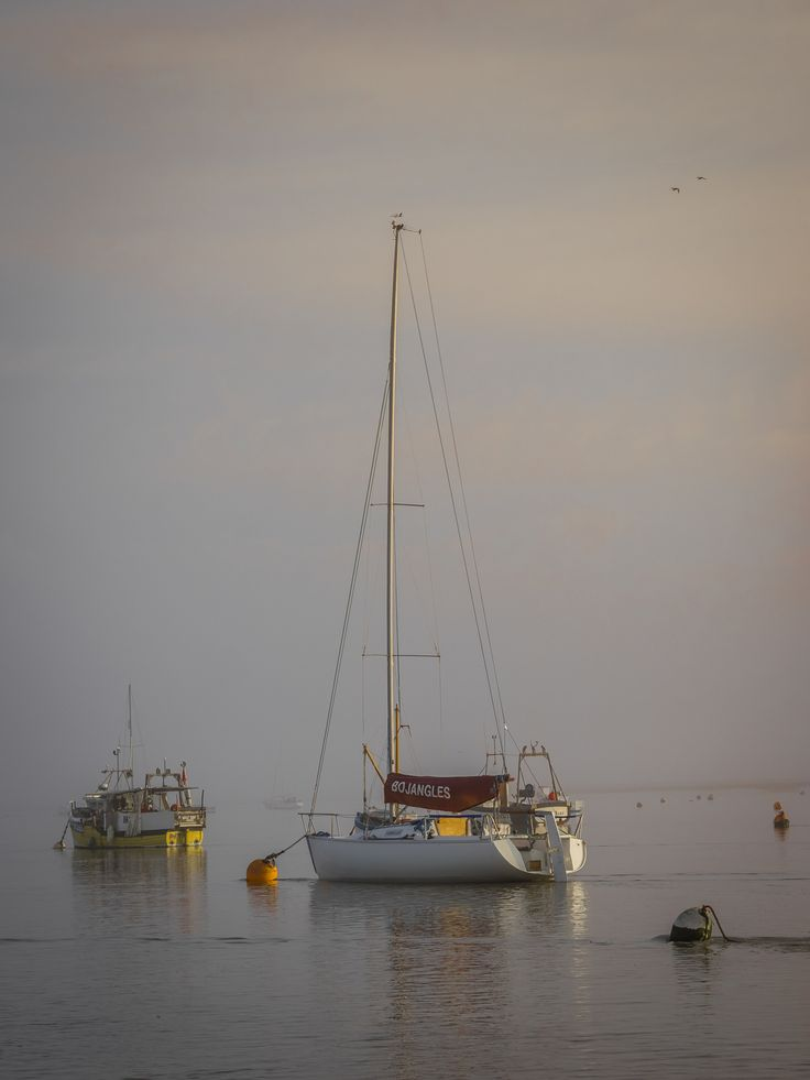 Bo Jangles Dawn by Nigel Lomas on 500px