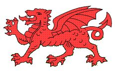 welsh products online