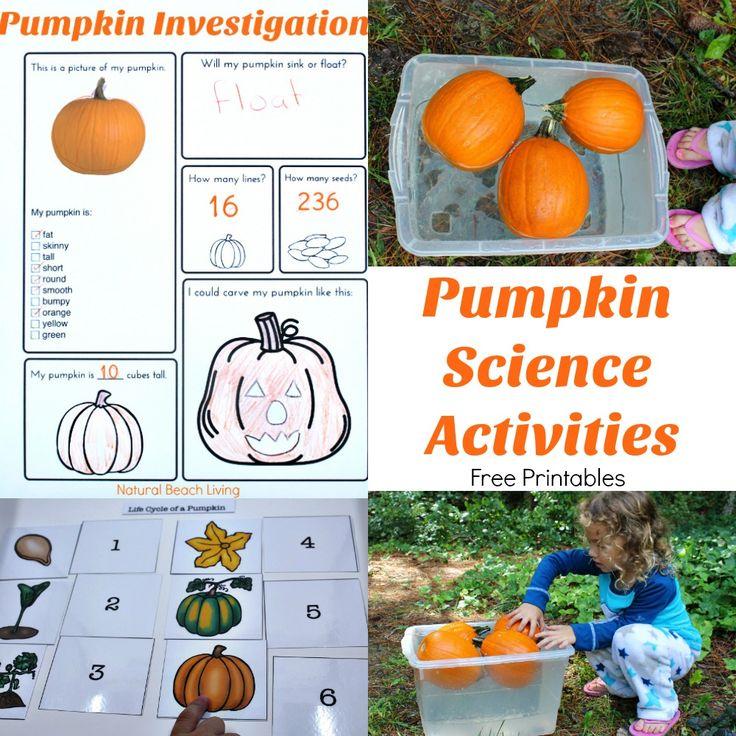 Pumpkin Activities for Kids – Pumpkin Theme Lesson Plan (STEM