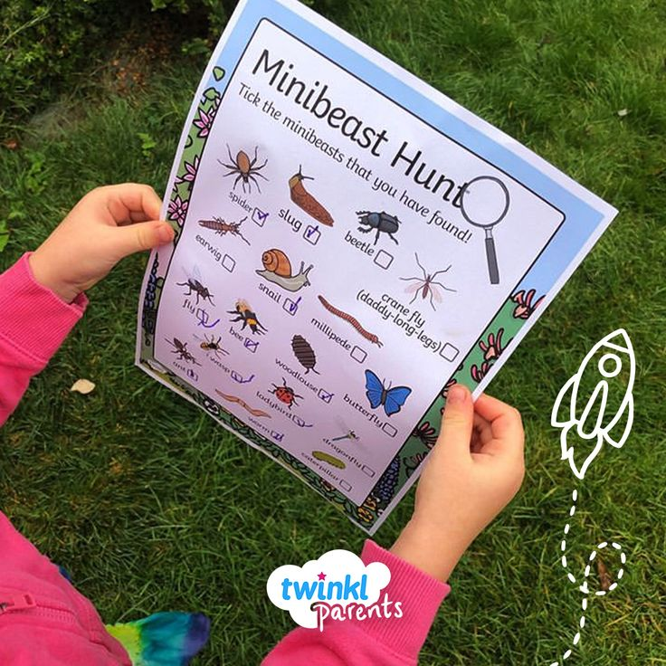 How Many Minibeasts Can You Find This Lovely Photo Was Shared By Thewhimsicalcloud Twinkl Eyfs Eyfs Minibeasts Unicorn Coloring Pages