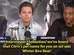"If I ever meet Sebastian Stan, I will have to restrain myself from saying, ""Hi-ya, Boo Bear!"""