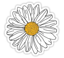 Daisy Sticker                                                                                                                                                                                 More