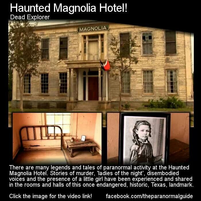 Gardner Haunted House: 78 Best Images About HAUNTED!!! On Pinterest