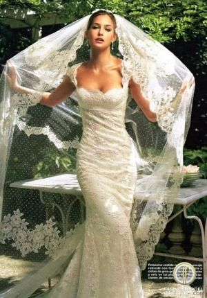 Laced mermaid wedding dress minus the veil