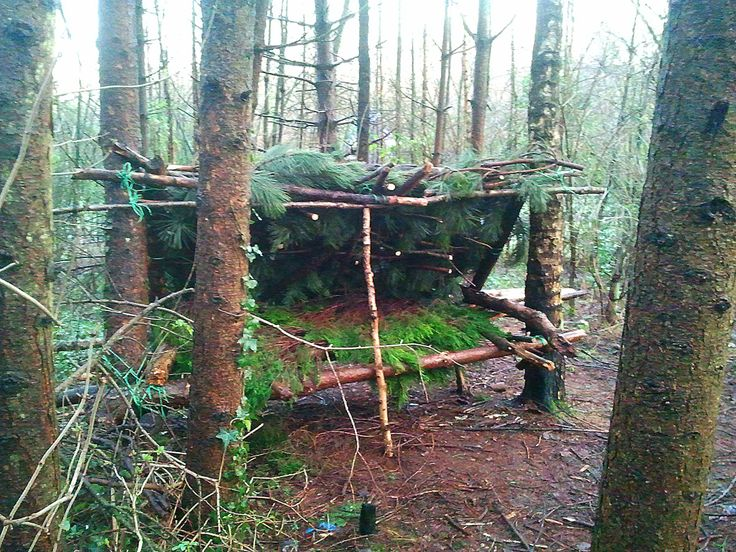 100 Wild Huts is an experimental challenge to build small survival shelters on any piece of ground harboring enough natural resources for the build