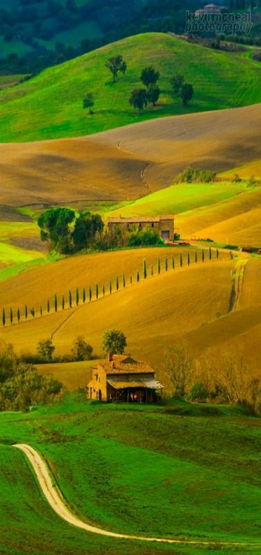 Tuscany Rolling Hills In Autumn, Pienza, Italy ~~by Kevin McNeal~~ Wow, I can't believe this is a photograph!