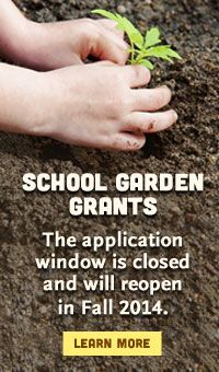 Food corps/ Whole Kids/ Annie's Garden school garden grants