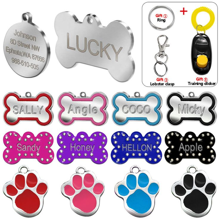 Engraved Pet Dog Tags Custom Cat ID Name Tags for Pets Personalized Paw Bone Shape FREE Gift S L