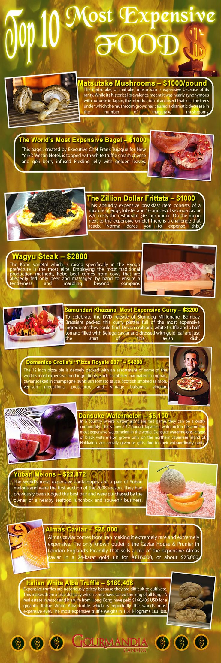 Here the most over the top foods with crazily insane prices that makes them the most expensive foods around the world.