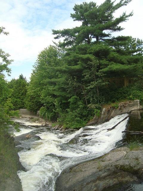 le lit de la rivière... Parc Marie-Victorin, Kingsey Falls
