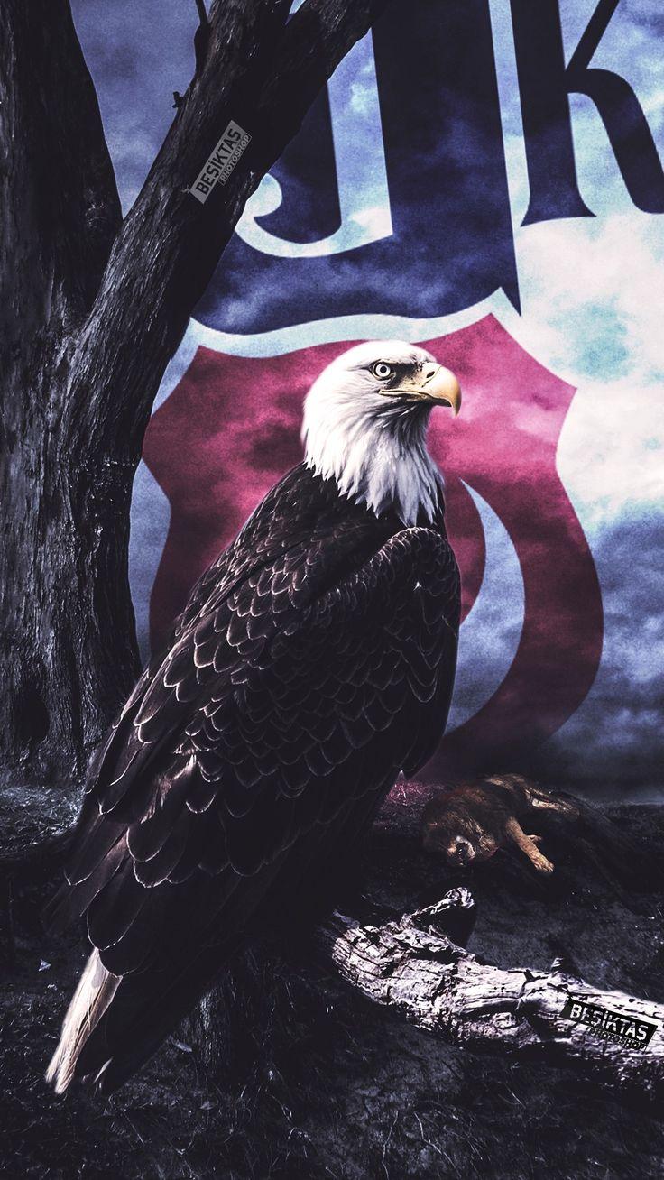 #beşiktaş #bjk #kartal #eagle #blackwhite