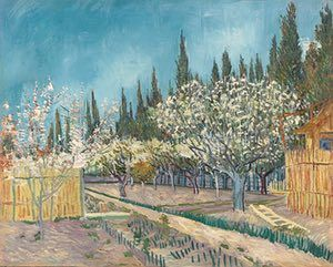 SPRING: Orchard bordered by cypresses (April 1888) - Oil on canvas. Van Gogh was captivated by fleeting moments of great beauty seen in nature. As the winter of 1888 thawed and spring blossoms emerged, he worked feverishly to complete a series of paintings of orchards near Arles before the weather turned.  Photograph: Kröller-Müller Museum, Otterlo, the Netherlands