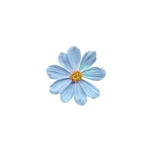 Pin By Vj Cast On فن Art Flower Aesthetic Flower Art Blue Art