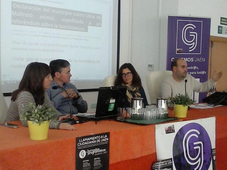 Ganemos Jaén aprueba su programa de gobierno para la ciudad
