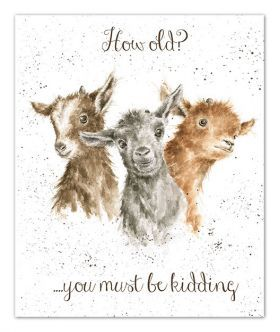OC040 Just kidding birthday card by Wrendale Designs