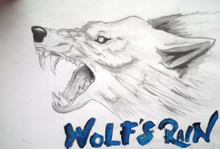 My favourite series WOLFS RAIN KIBA<3