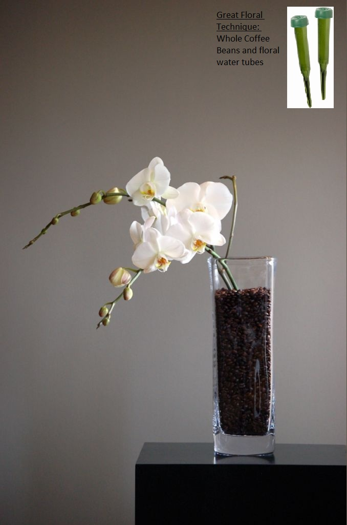 Easy beautiful floral arrangement   Need: Whole coffee beans, orchid stems, and floral water pieces.     Fill vase with coffee beans. Place the ends of an orchid stem into a filled floral water pieces to keep the flower watered. Push the orchid stems into the coffee beans! ~Enjoy