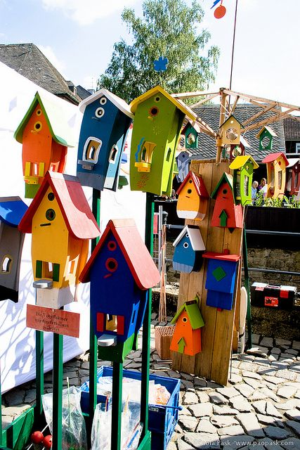 """Birdhouse complex -- i like the idea of having a birdhouse """"community"""" like seeing if they'll live in an apartment complex or subsidized housing."""