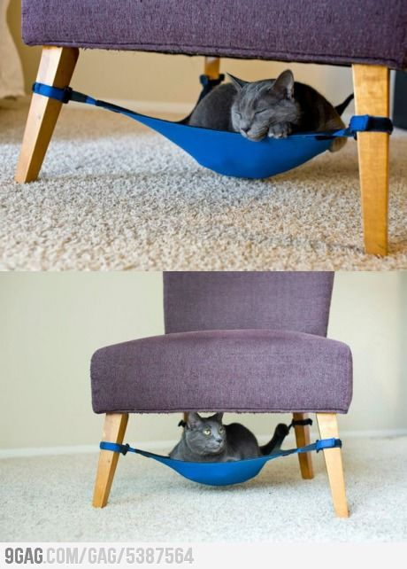 Cat Crib: Space Saving Cat Bed