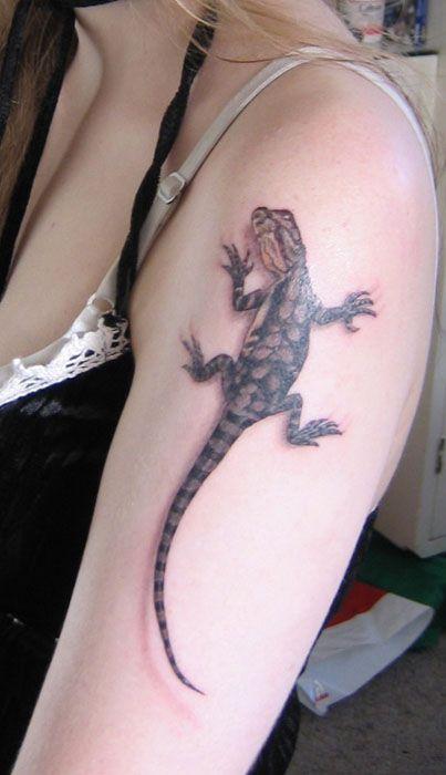 Fotos de Tatuajes de Lagartijas Y Geckos, Videos de Tatuajes de Lagartijas Y Geckos, Imagenes de Tatuajes de Lagartijas Y Geckos, Diseños de Tatuajes de Lagartijas Y Geckos, Galeria de Tatuajes de Lagartijas Y Geckos para hombres y mujeres