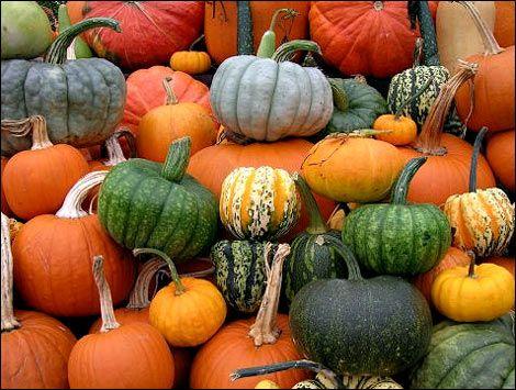 Pumpkin for Best Health Benefits