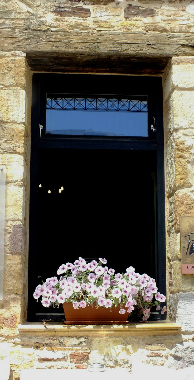 Pencerede çiçekler Samos 2017