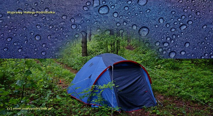 Wet morning in Beskid Niski Mountains - Poland.  {Mokry poranek w Beskidzie Niskim} #Poland #mountains #Beskid Niski