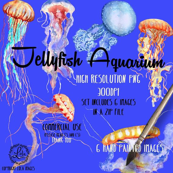 Hey, I found this really awesome Etsy listing at https://www.etsy.com/listing/604930187/jellyfish-aquarium-digital-clipart-jelly
