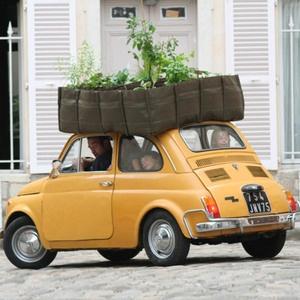 Roof garden ...: Mobiles Gardens, Gardens Things, Smart Cars, Herbs Garden, Gardens Container, Outdoor Gardens, Fast Food, Fiat 500, Portable Gardens