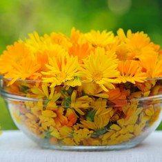 Рецепты лечения цветами календулы - Woman's Day