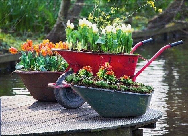 Hordozható virágágyás - 7+1 tipp a kert díszítéséhez