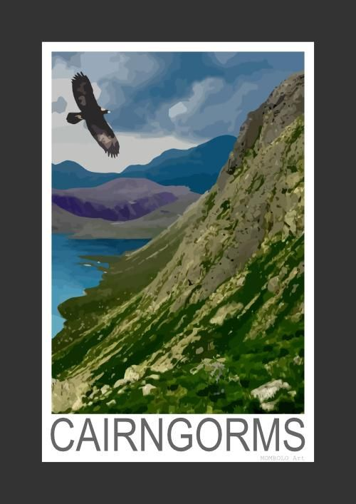 Golden Eagle soaring above the Cairngorms, Scotland (Art Print)