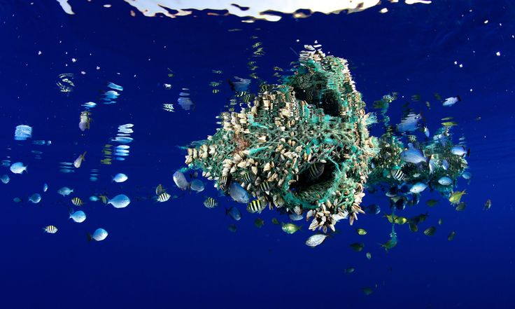 Full scale of plastic in the world's oceans revealed for first time  Over five trillion pieces of plastic are floating in our oceans says most comprehensive study to date on plastic pollution around the world