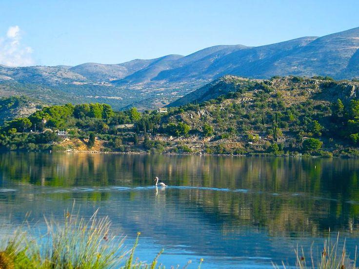 Koutavos lagoon in Argostoli.