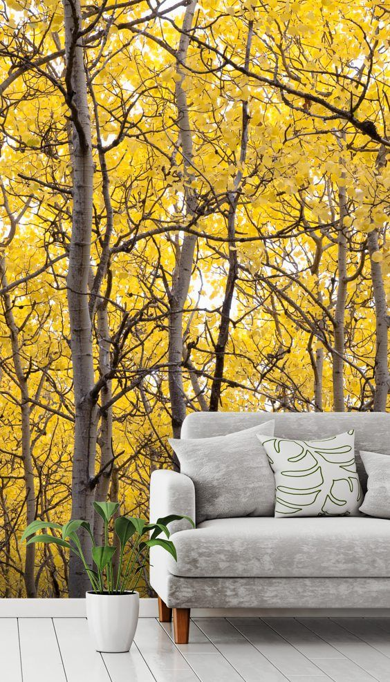 Autumn Scenic Of Colorful Yellow Aspen Trees Tree wall