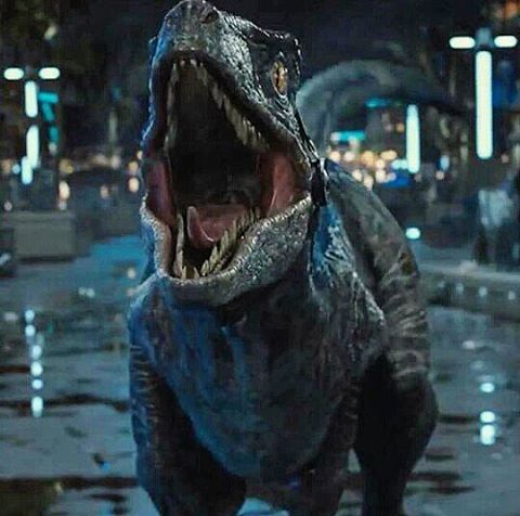 Blue - The Raptor - Jurassic World. Music: I Got the Power - Snap. https://www.youtube.com/watch?v=ksR1IGYeJOg