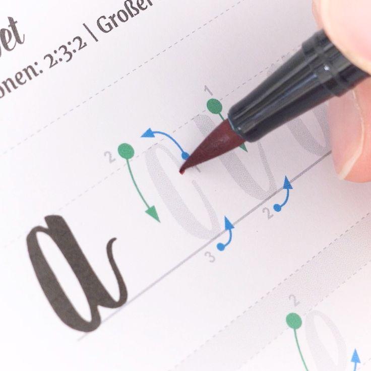 Brushlettering Workbook (für große Brushpens)